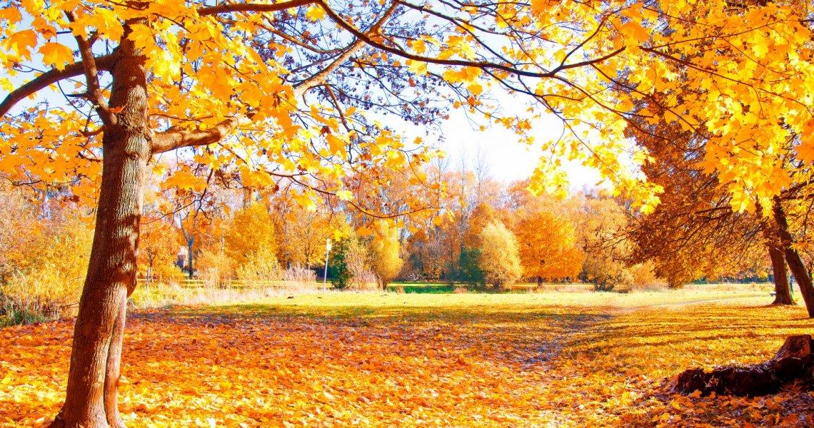 6 spunti su cosa fare in autunno sul Lago di Garda